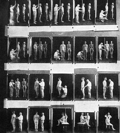 anthropometry_exhibit