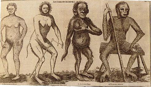 linnaeus homo_sapiens