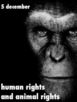 human rights and the enlightenment essay