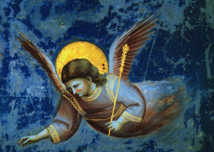 giotto-angel