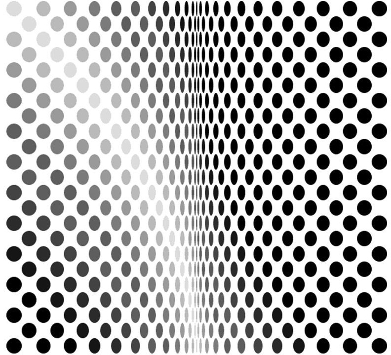 bridget riley loss
