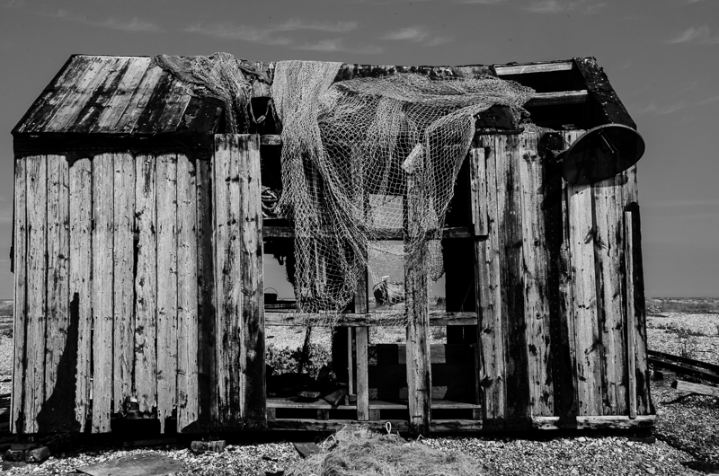 dungeness 1