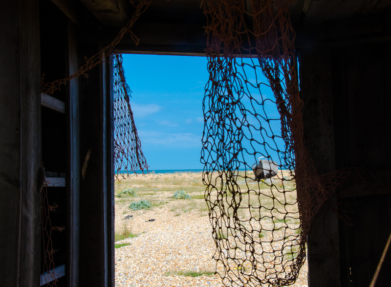 dungeness 2