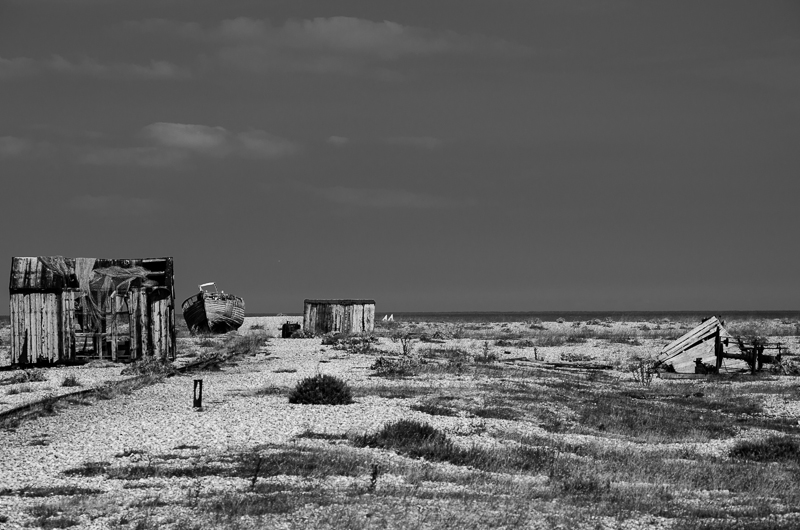 dungeness 5