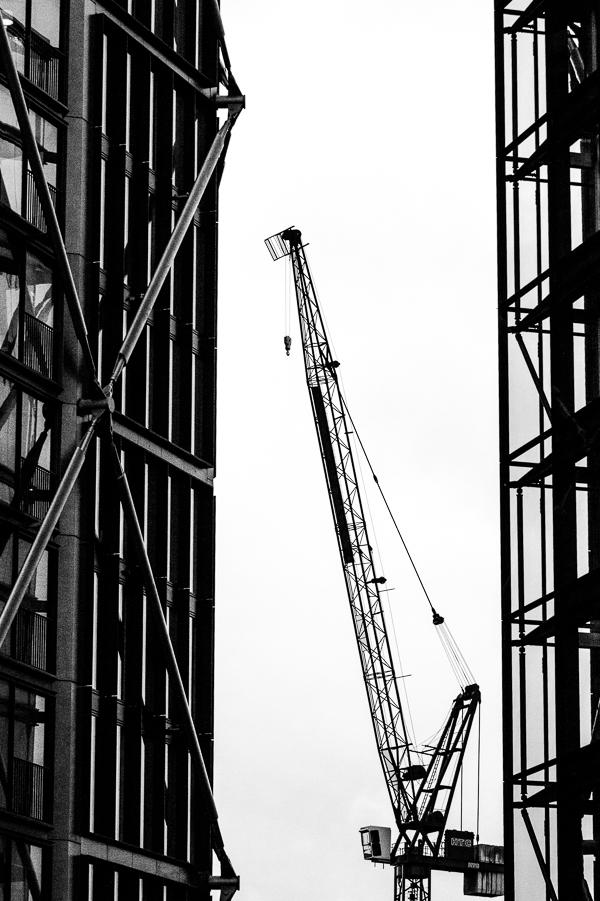 cranes1