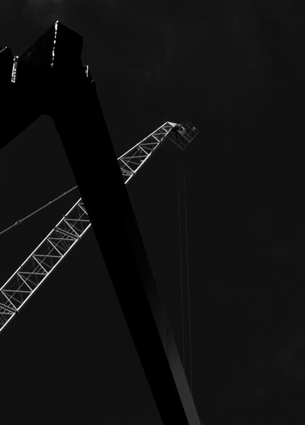cranes10