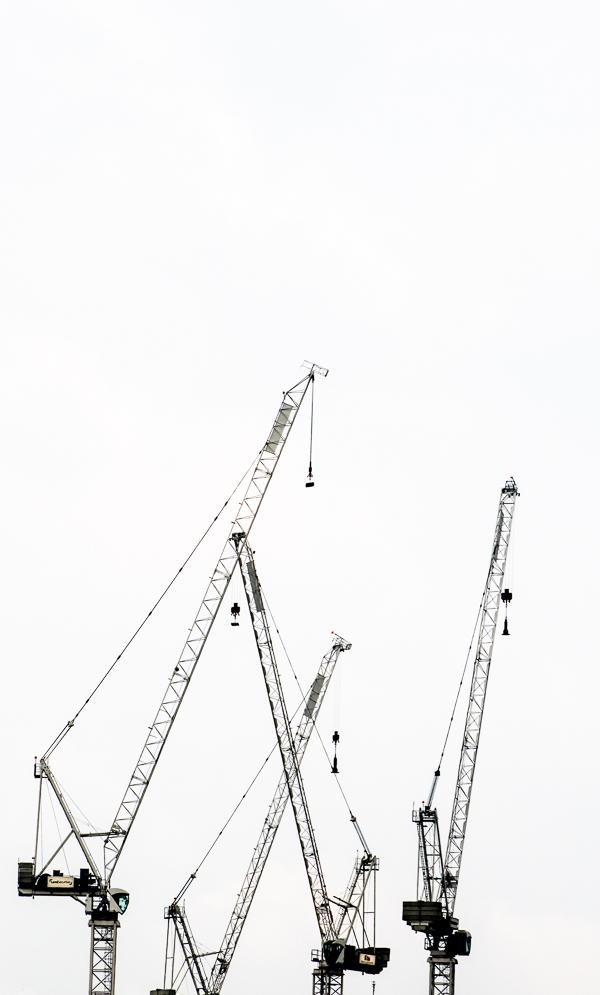 cranes18