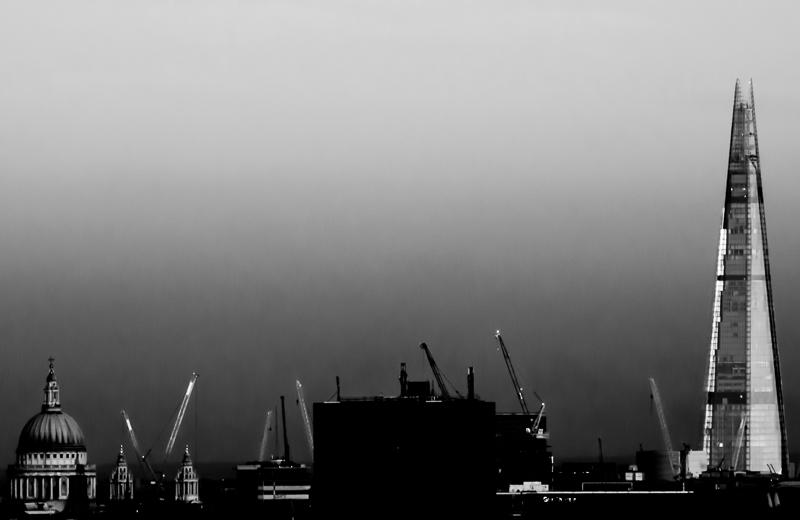 cranes19