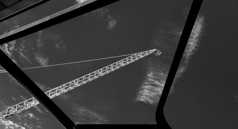 cranes7