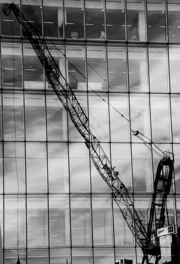 cranes8