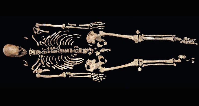 the kennewick man essay An exploration of the kennewick man controversy the kennewick man controversy is one of the most well known federal court cases dealing with.