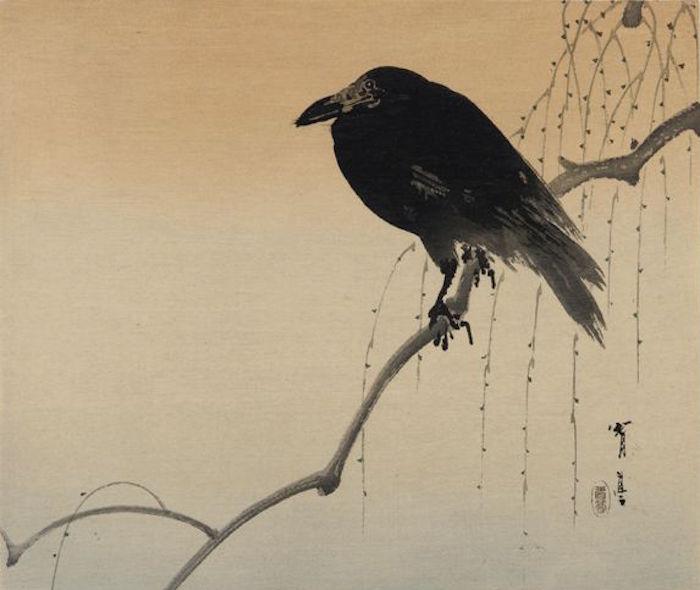 watanabe seitei crow