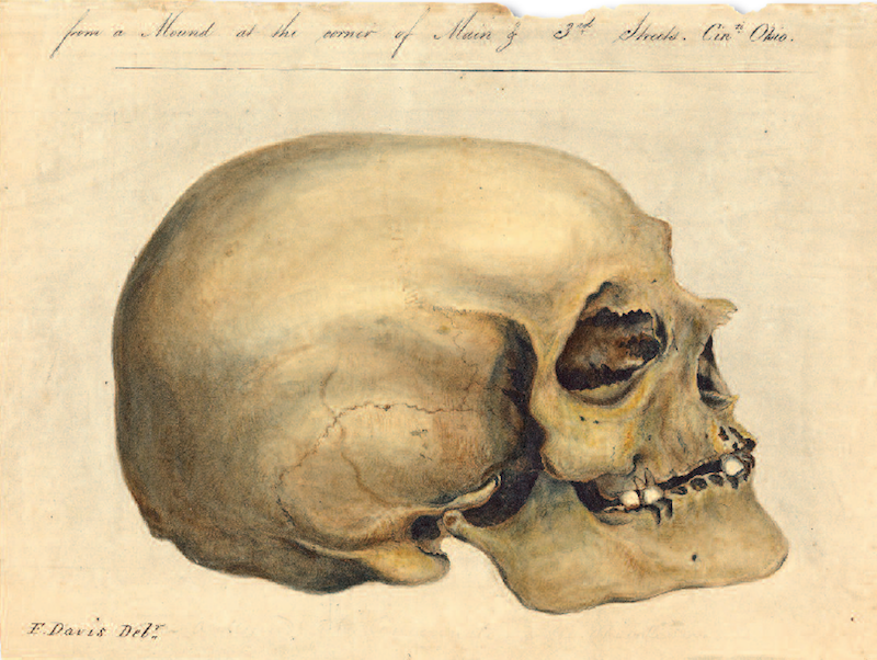 crania americana
