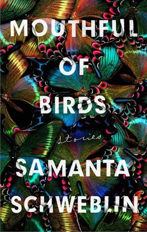 samanta schwerbin mouthful of birds