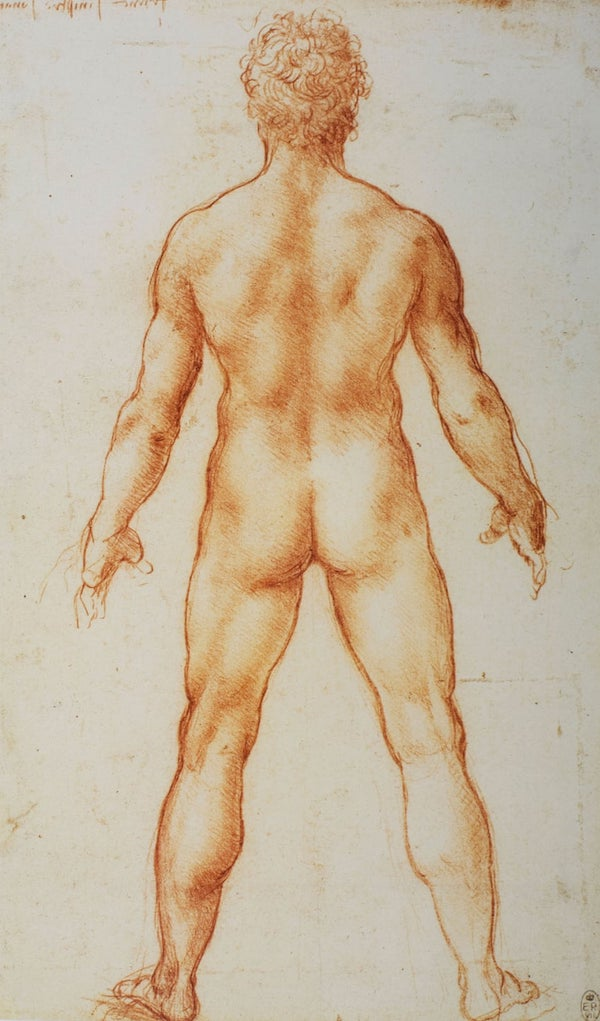 Leonardo A male nude from behind