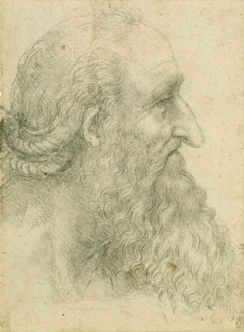 Leonardo The head of an old bearded man